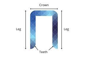 diagram of crown stapler