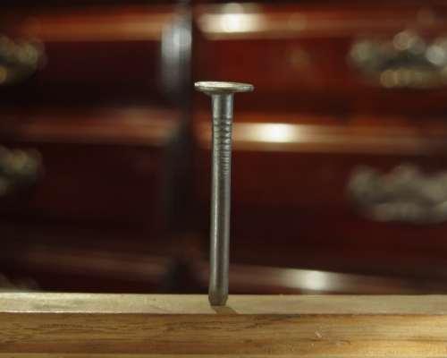Wood nails